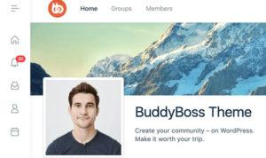 Download free BuddyBoss Theme v1.4.6