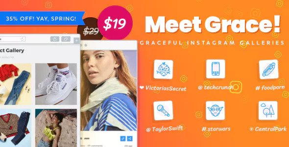 Download free Instagram Feed Gallery – Grace for WordPress v1.1.14