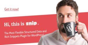 Download free SNIP v2.17.5 – Structured Data Plugin for WordPress