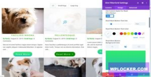 Download free Divi FilterGrid v2.1.1 – Create a Beautiful Grid Layout of any Post Type