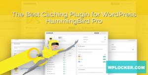 Download free Hummingbird Pro v2.4.3 – WordPress Plugin