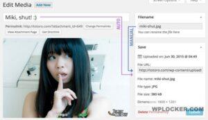 Download free Media File Renamer Pro v5.0.2