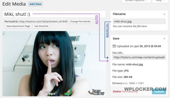 Download free Media File Renamer Pro v5.0.2
