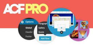 Advanced Custom Fields Pro v5.9.2