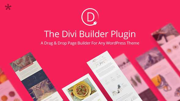 Divi Builder v4.6.5 – Drag & Drop Page Builder WP Plugin