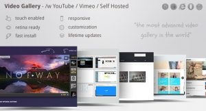Download free Video Gallery WordPress Plugin /w YouTube, Vimeo v11.66