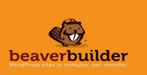 Beaver Builder Pro v2.4.1.3