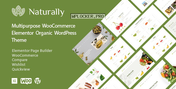 Naturally v1.2.3 – Organic Food & Market WooCommerce Theme