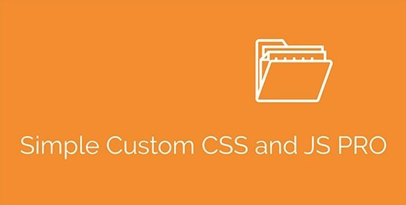 Simple Custom CSS and JS PRO v4.21.4