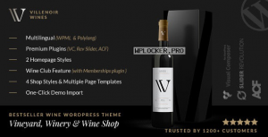 Villenoir v4.9 – Vineyard, Winery & Wine Shop