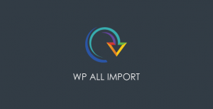 WP All Import Pro v4.6.5