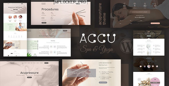 Accu v2.4 – Healthcare, Massage Theme