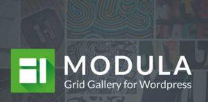 Modula Pro v2.4.0 + Addons