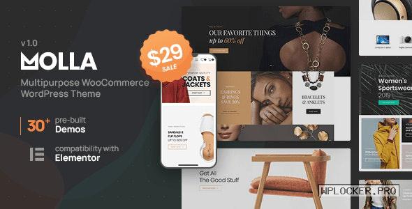 Molla v1.0 – Multi-Purpose WooCommerce Theme