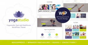 BeYoga v1.1.3 – Yogastudio & Gym WordPress Theme