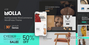 Molla v1.1 – Multi-Purpose WooCommerce Theme