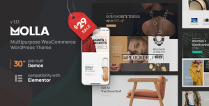 Molla v1.1.2 – Multi-Purpose WooCommerce Theme