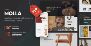 Molla v1.2 – Multi-Purpose WooCommerce Theme