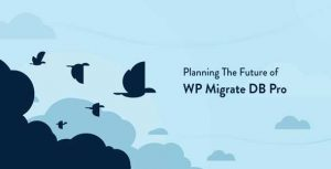 WP Migrate DB Pro v1.9.14 + Add-Ons