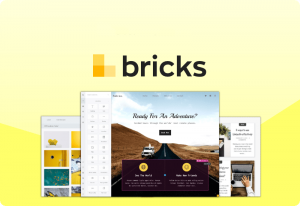 Bricks v1.1.3 – Visual Site Builder for WordPress