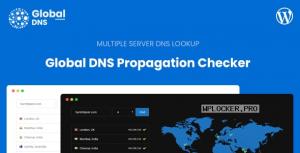 Global DNS – Multiple Server – DNS Propagation Checker – WP