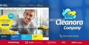 Cleanora v1.0.7 – Cleaning Services Theme